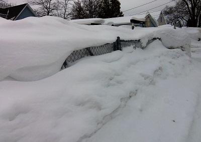 fence snow