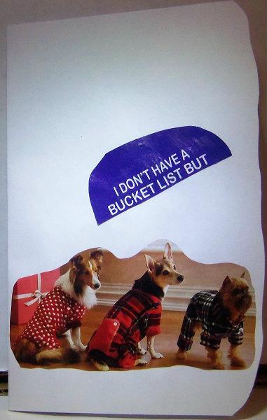 1 front x bucket list