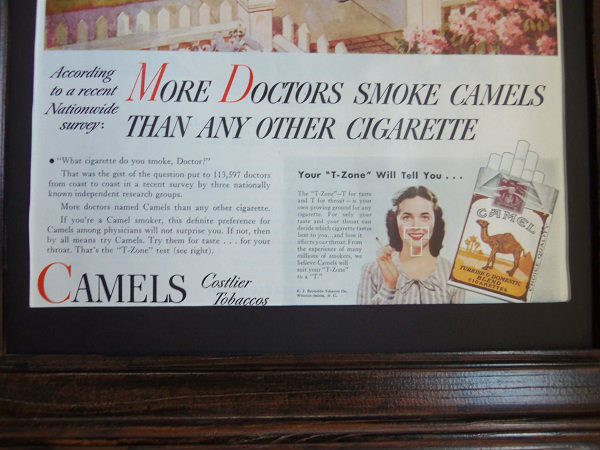 pic more docs smoke camel