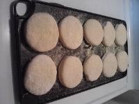 english muffins risin before fryin.jpg
