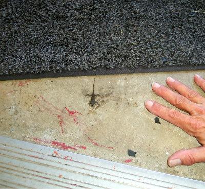 7 meet hand 100_1900.JPG