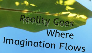 """a large green bannana leaf fills the top half of image, with the blue sky in lower half. Words written, """"Reality goes where imagination flows"""". By ren again original"""