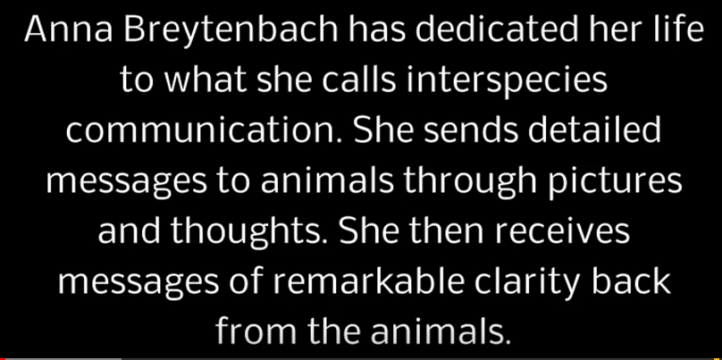 youtube screenshot - Anna Breytenbach has dedicated her life to what she calls interspecies communication. She sends detailed messages to animals through pictures and thoughts. She then receives messages of remarkable clarity back from the animals.