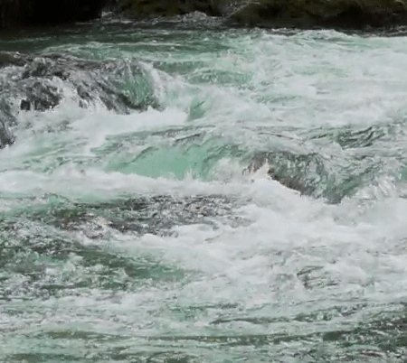 screenshot from River of Life video, of a flowing river