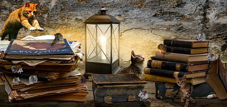 fantasy image with a lit lantern in the middle and stacks of old books and magazines on either side. Five cats are randomly among the image with one at the left, jumping onto a stack of magazines