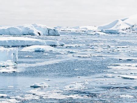 vastness of icebergs floating in ice laden waters