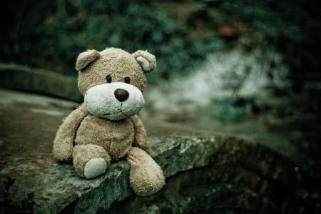a sad teddy bear sitting in nature