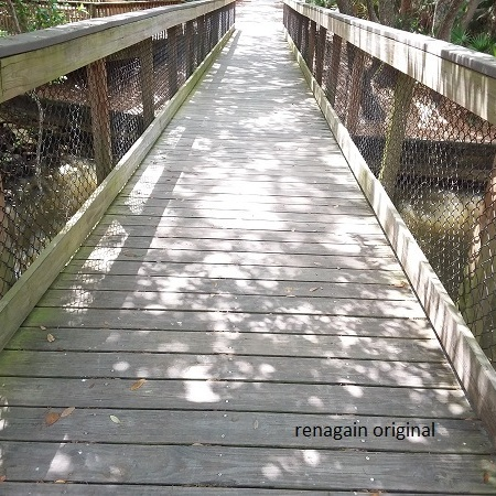 a long wooden foot bridge over a small body of water