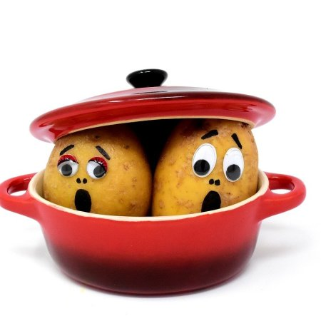 2 potatoes in a pot with lid on top of their heads. They have faces of fear